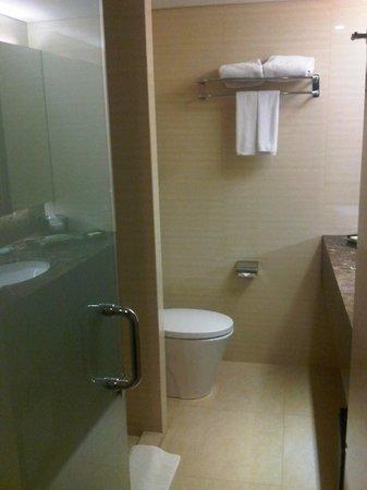 Hotel Santika Premiere Jogja: Bathroom