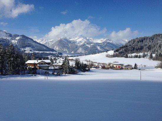 Bergblick Ferienhotel: what a view