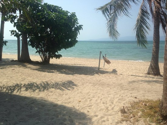 Phangan Beach Resort : Private beach