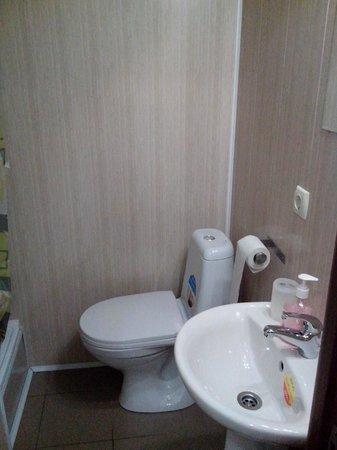 Botanicheskiy Guest House : туалет