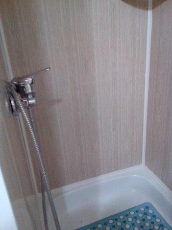 Botanicheskiy Guest House : душ