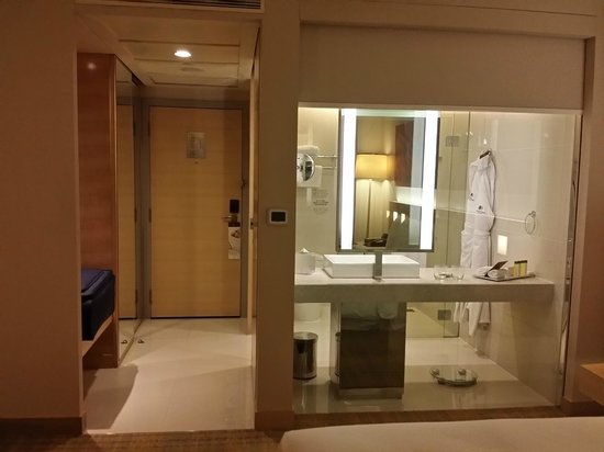 DoubleTree by Hilton Kuala Lumpur: See through bathroom