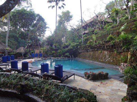 Hotel Tjampuhan & Spa: pool