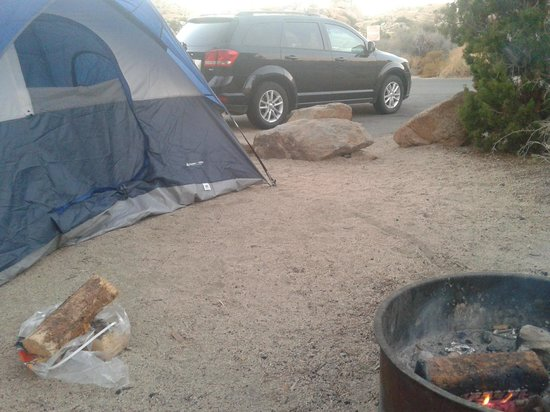 Jumbo Rocks Campground: Unsere Campsite