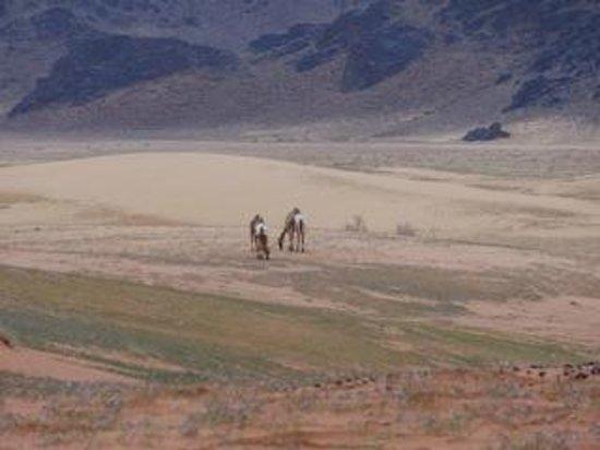 Movenpick Resort & Spa Tala Bay Aqaba: Day trip to Wadi Rum, incredible!