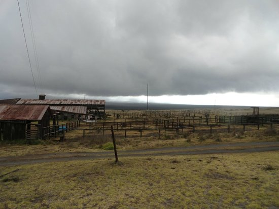Mauna Kea Summit Adventures: eerie Parker Ranch