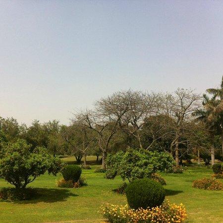 Bahai Lotus Temple: Jardines.
