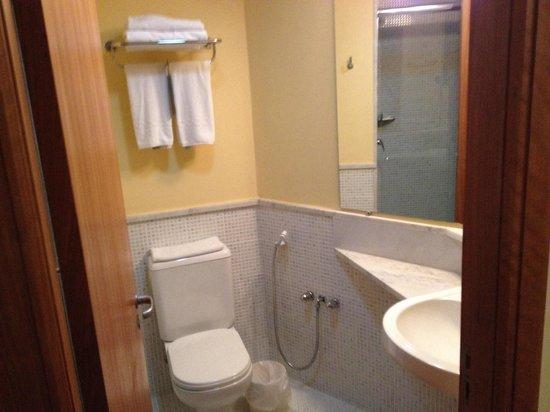 Slaviero Executive Curitiba Batel: Banheiro