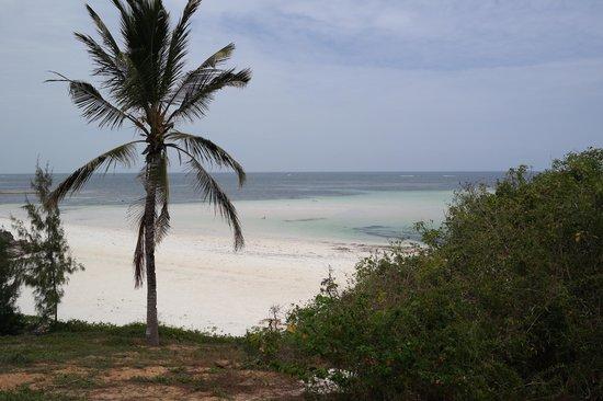Garoda Resort: un sogno...