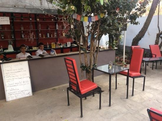CAFE DES ARTS : le bar du café des arts une belle apres-midi de mars
