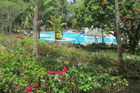 Diani Sea Resort: Pool view