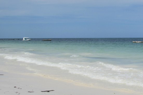 Diani Sea Resort: perfect