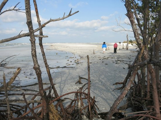 Marco Island Boat Tours: island for shelling