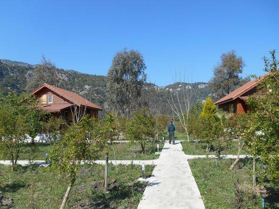 Villa Iz: Two apart family houses of the Villaiz