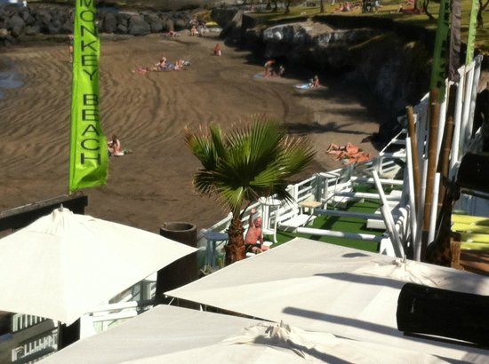 Gran Oasis Resort: Monkey beach from top level