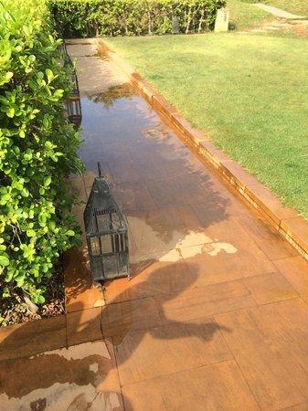 Phulay Bay, A Ritz-Carlton Reserve: Полили травку... и так не только тут
