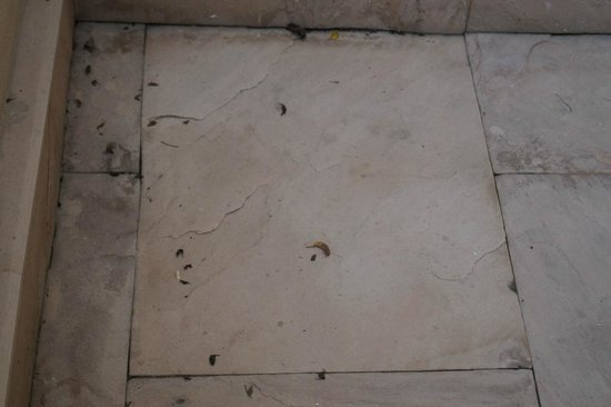 The Oberoi Amarvilas: The floor in our balcony, not even swept!
