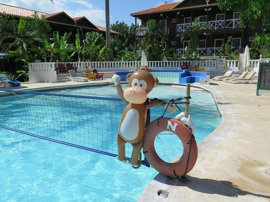 N-Resort All Inclusive For Adults: Monkey was one of my wife's favorites on 'staff'