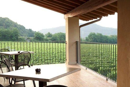 Agriturismo Tenuta Badi: Panorama dalle camere