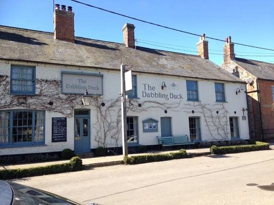 Dabbling Duck: Lovely pub, great stop with the dogs, excellent friendly service. 10/10 going back for food.
