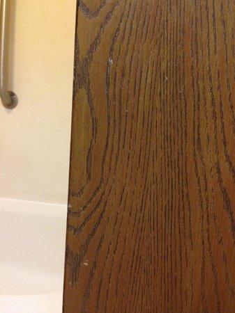 Hampton Inn Auburn: Bathroom door - dirty