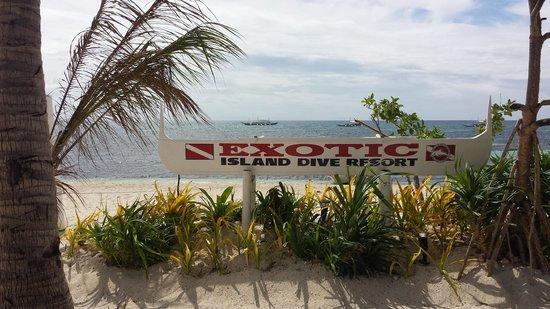 Malapascua Exotic Diving Center: Exotic