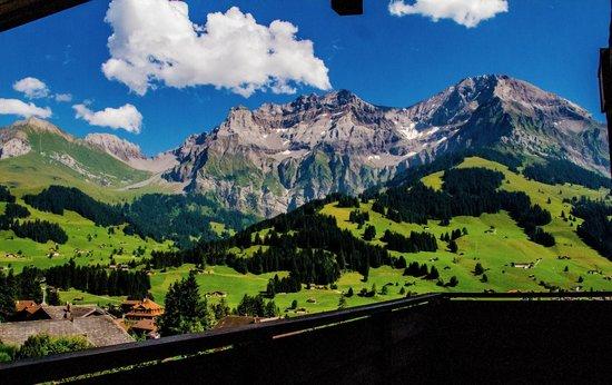 Hotel Viktoria Eden: Aussicht auf die Berge