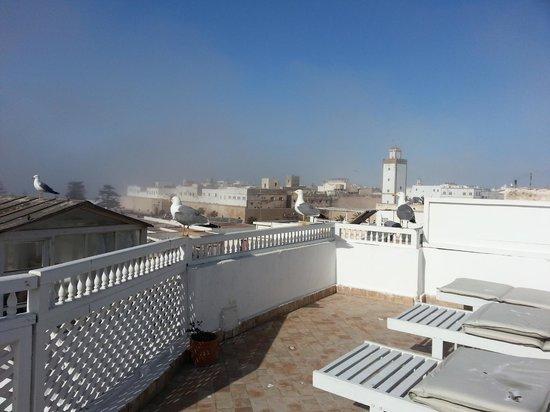 Dar Assalama: vista desde la terraza