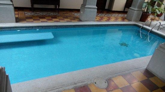 La Gran Francia Hotel y Restaurante: La Gran Francia Swimming Pool