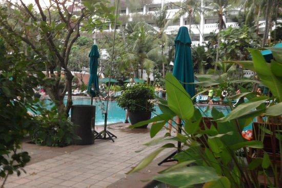 Anantara Riverside Bangkok Resort : PISCINE