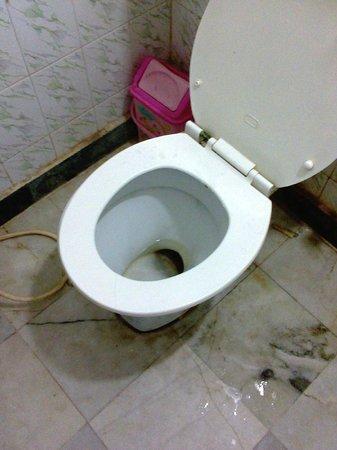 Hotel Taj Plaza : Dirty toilet