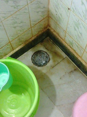 Hotel Taj Plaza: dirt in the every corner toilet