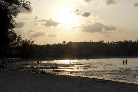 Q Signature Samui Beach Resort : Beach at the resort