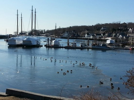 Hartstone Inn & Hideaway: Short walk to downtown Camden. This is in the winter and the ducks love this area.