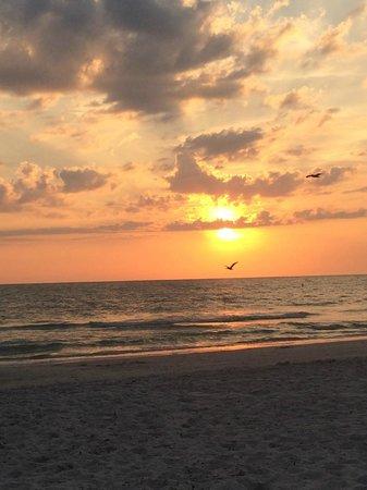 Howard Johnson Resort Hotel - ST. Pete Beach FL: The beach at sunset :)