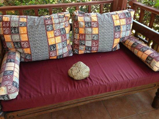 Crystal Bay Resort: Ricordo dal safari