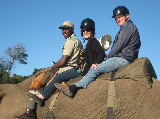 Botlierskop Private Game Reserve: Our Elephant ride with our guide, Silas