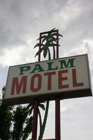 The Palm: Classic but new