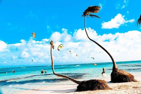 Playa Blanca Restaurant: exotique
