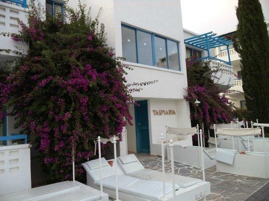 Tasmaria Hotel Apts.: территория
