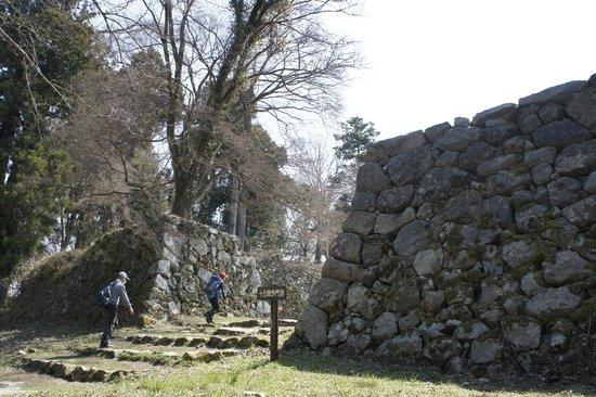 Ruins of Takatori Castle