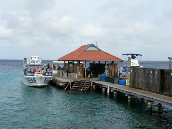 Divi Flamingo Beach Resort and Casino : The Dive Dock