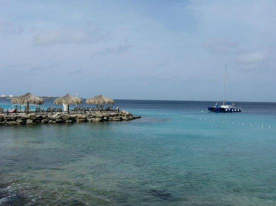 Divi Flamingo Beach Resort and Casino : View from the Dive Shop