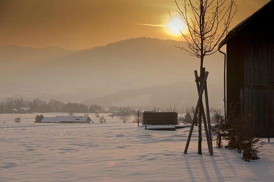 Gasthof Wälderhof: Aussicht vom Hotel im Winter