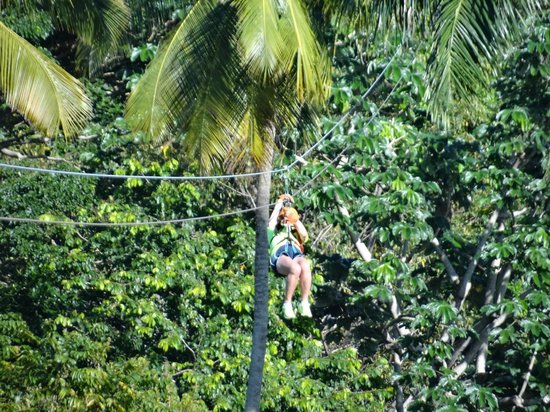 Canopy Adventure Zip Line Tours : A great adventure!