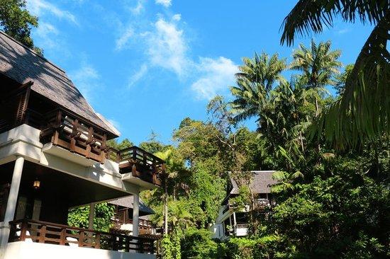 Gaya Island Resort : Room/suite
