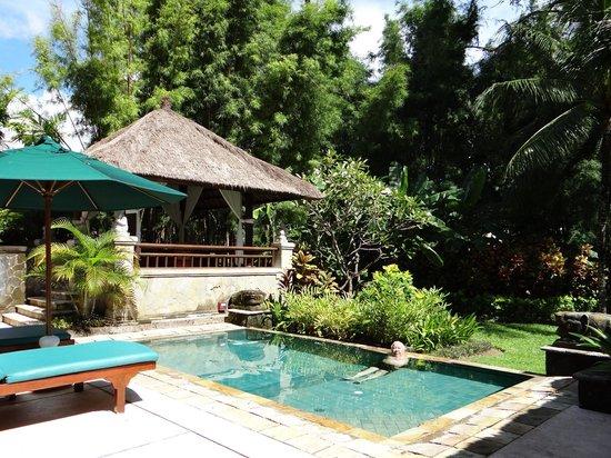 Melia Bali Indonesia: From My Window.