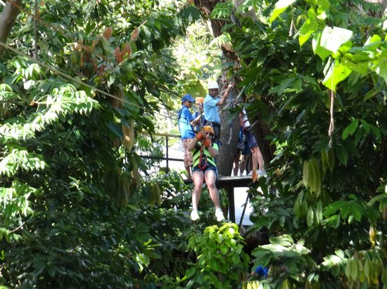Canopy Adventure Zip Line Tours : Just the first of the 10 zip-line Canopy Adventure.