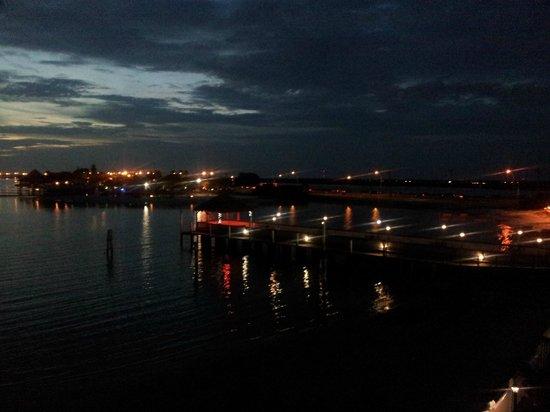 The Godfrey Hotel & Cabanas Tampa : panorama