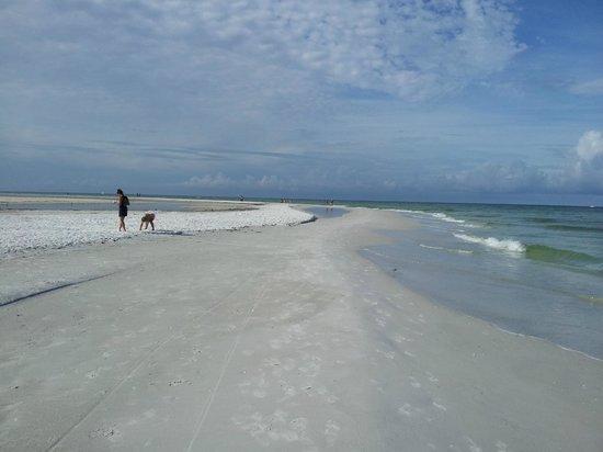 Best Western Plus Siesta Key Gateway: spiaggia